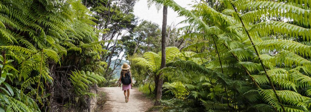 Marahau Water Taxi - Walking and Hiking in The Abel Tasman National Park