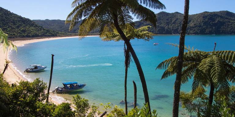 Marahau Water Taxis - Take a trip - shop online for the best water taxi trips